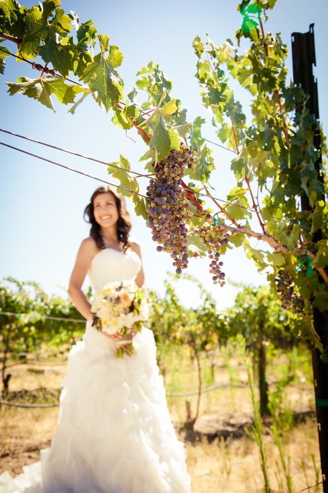 Cellar 360 Winery Wedding019.jpg