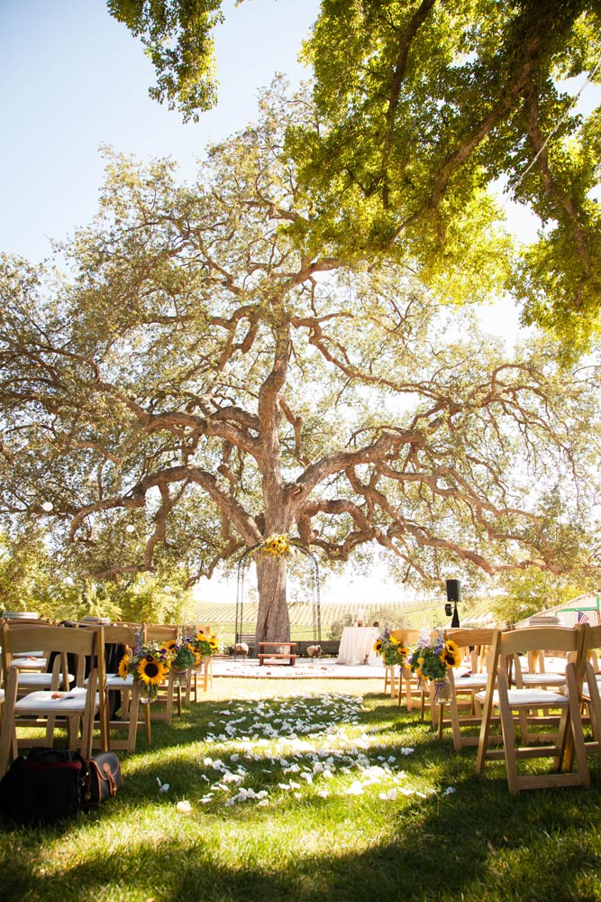 Pomar Junction Vineyard Wedding016.jpg