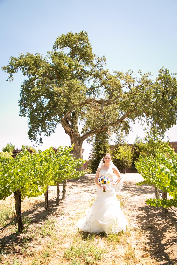 Robert Hall Winery Wedding013.jpg