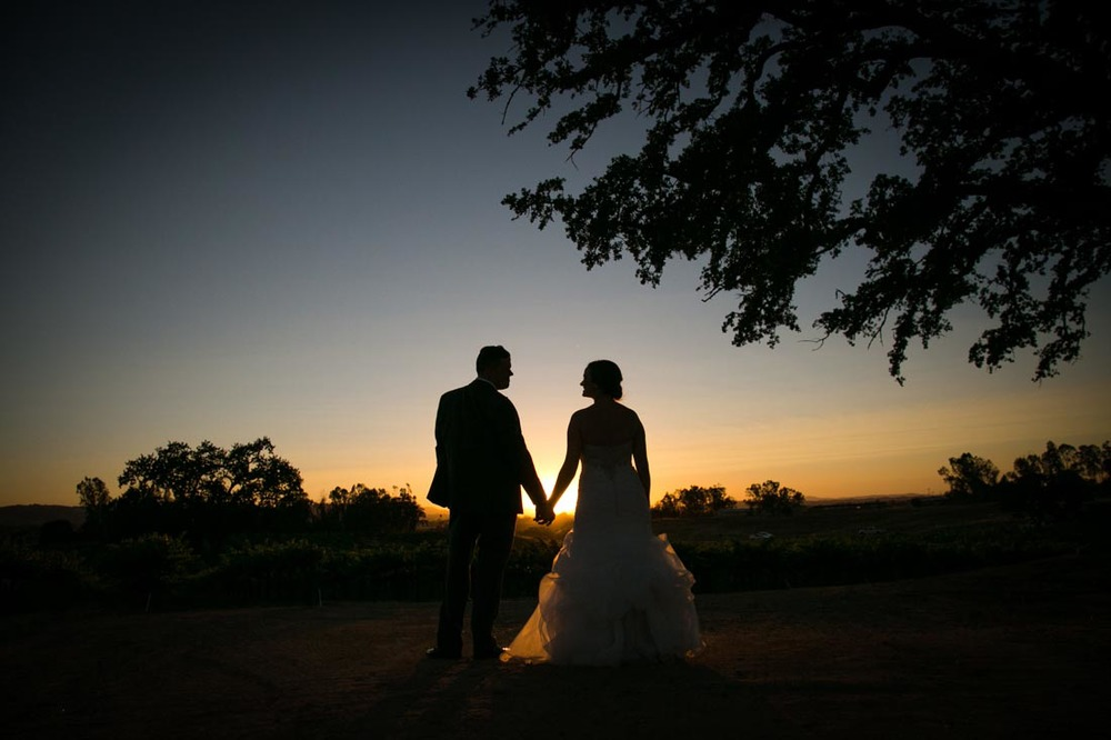 Robert Hall Winery Wedding117.jpg