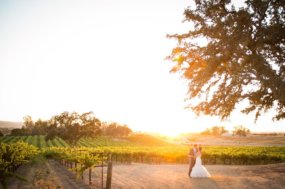 Robert Hall Winery Wedding118.jpg