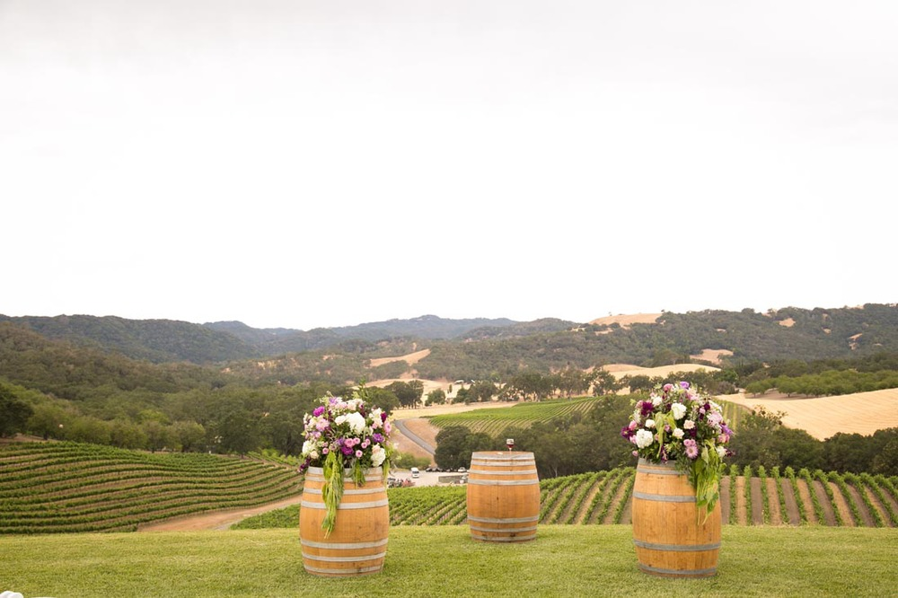 Opolo Vineyards Wedding053.jpg