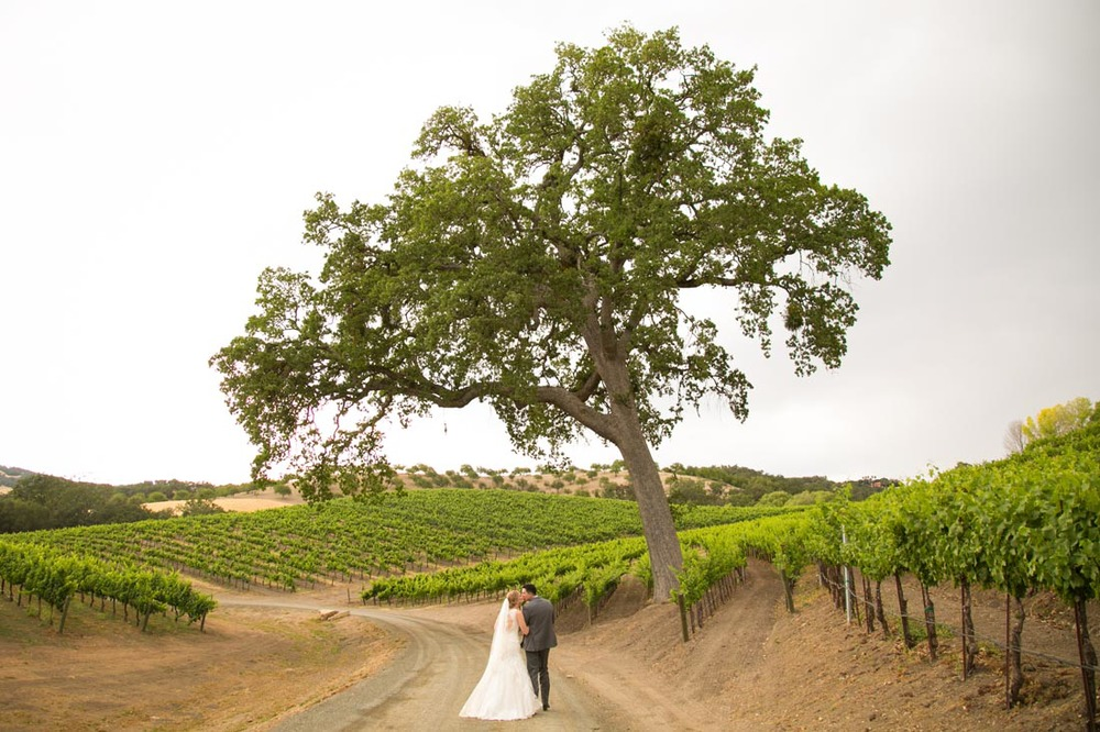 Opolo Vineyards Wedding110.jpg