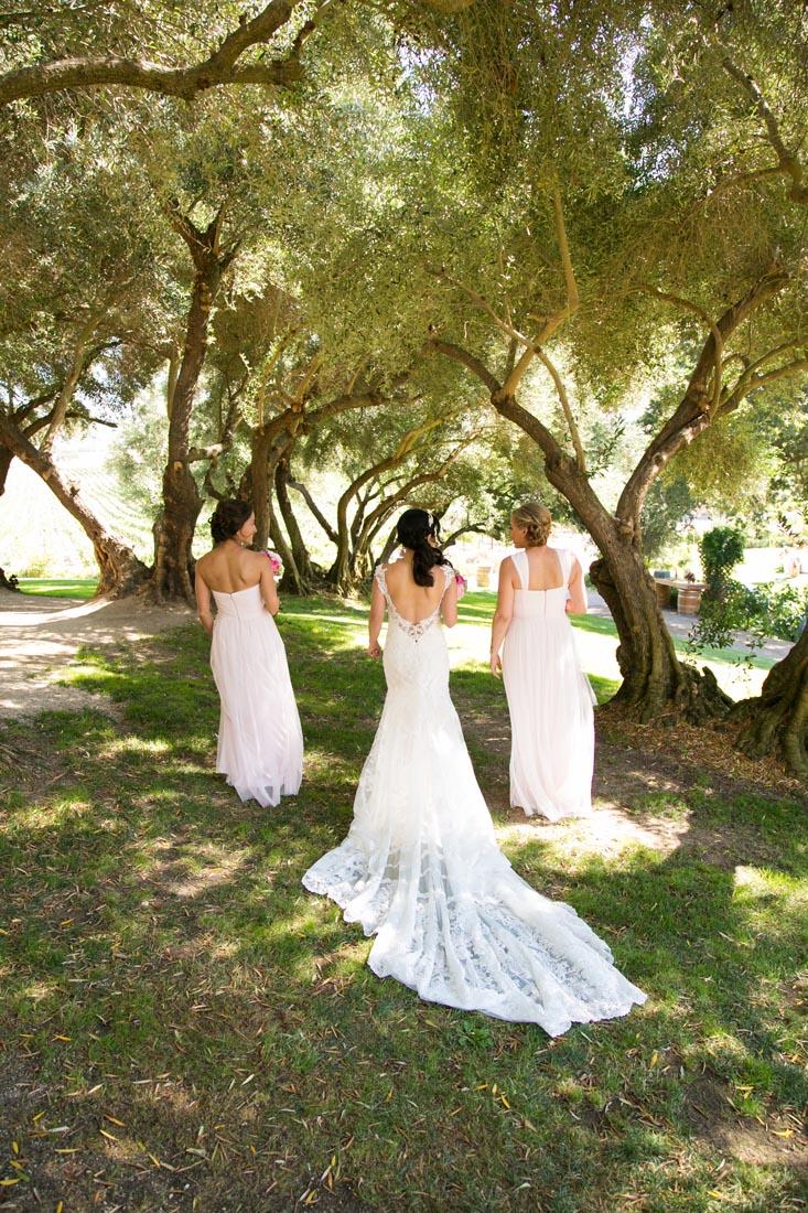 Still Waters Vineyards Wedding043.jpg