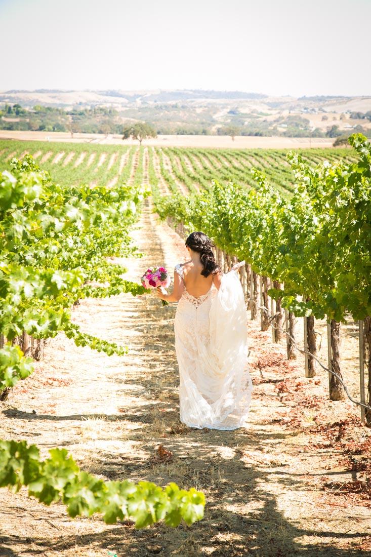 Still Waters Vineyards Wedding044.jpg