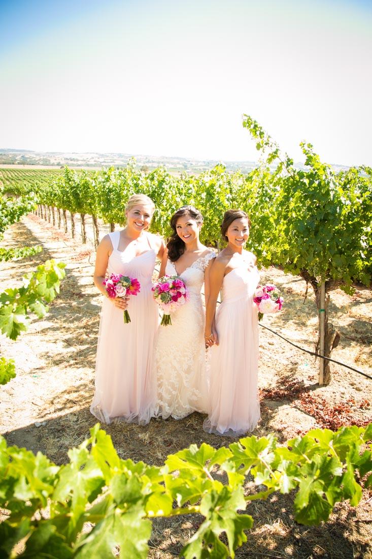 Still Waters Vineyards Wedding046.jpg