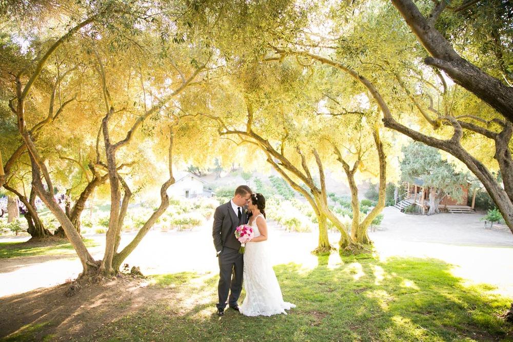 Still Waters Vineyards Wedding101.jpg