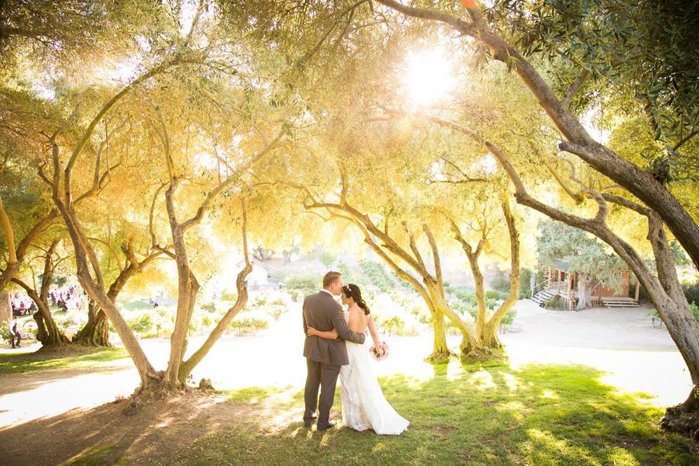 Still Waters Vineyards Wedding102.jpg