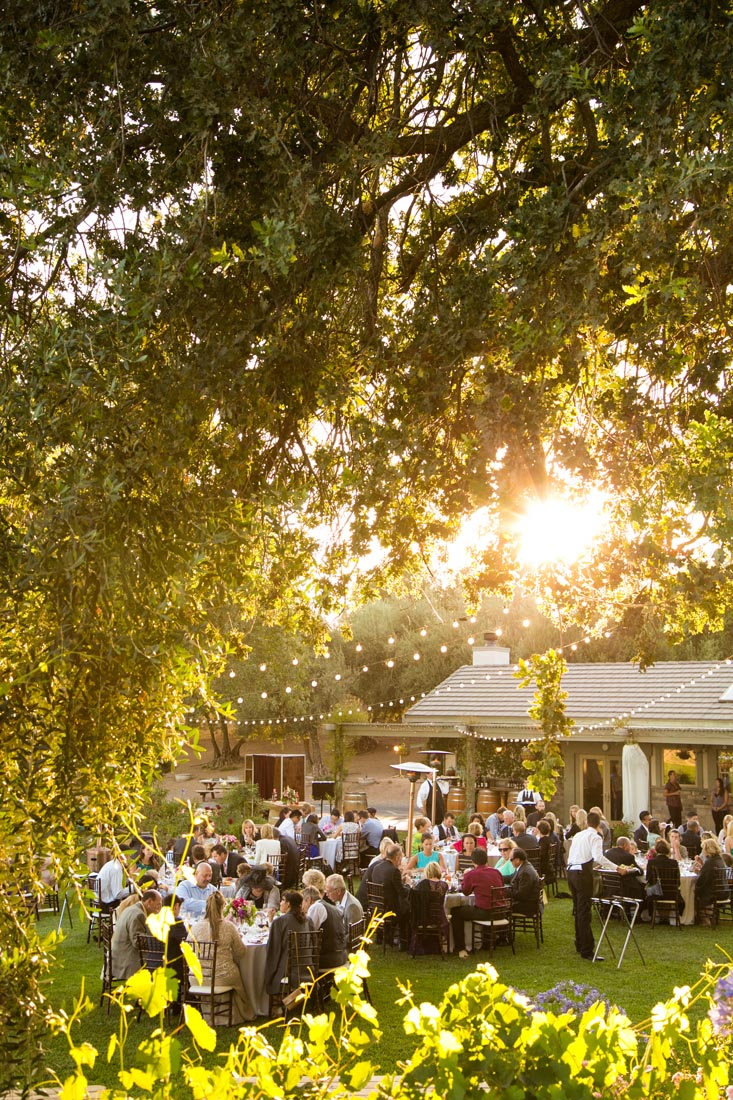 Still Waters Vineyards Wedding126.jpg
