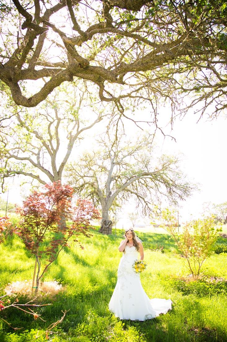 Cass Winery Wedding0015.jpg