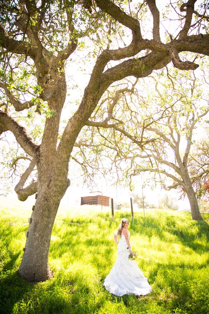 Cass Winery Wedding0022.jpg