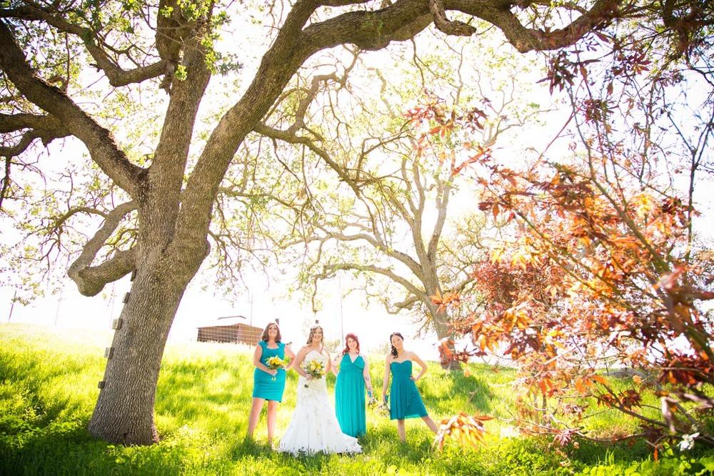 Cass Winery Wedding0025.jpg