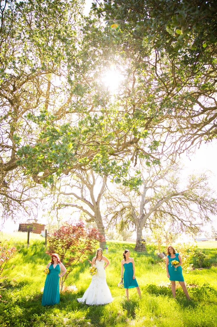 Cass Winery Wedding0027.jpg