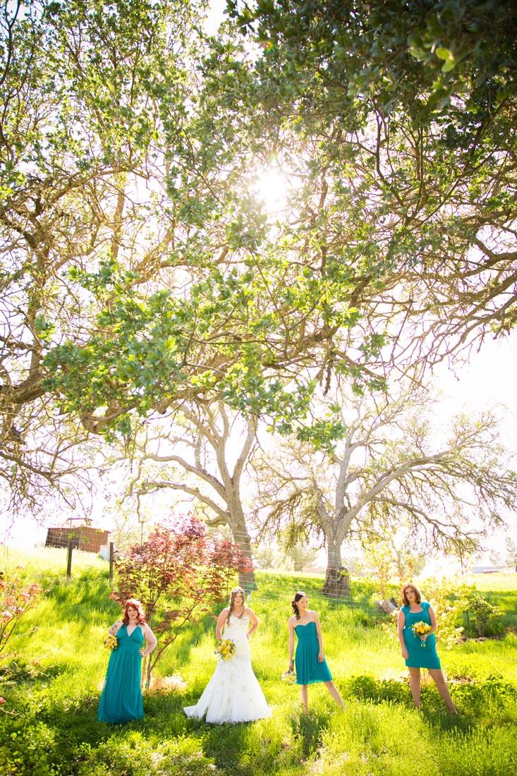 Cass Winery Wedding0028.jpg