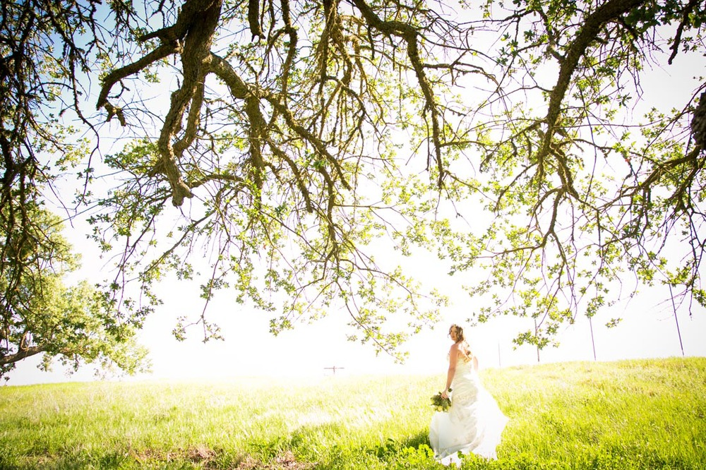 Cass Winery Wedding0029.jpg