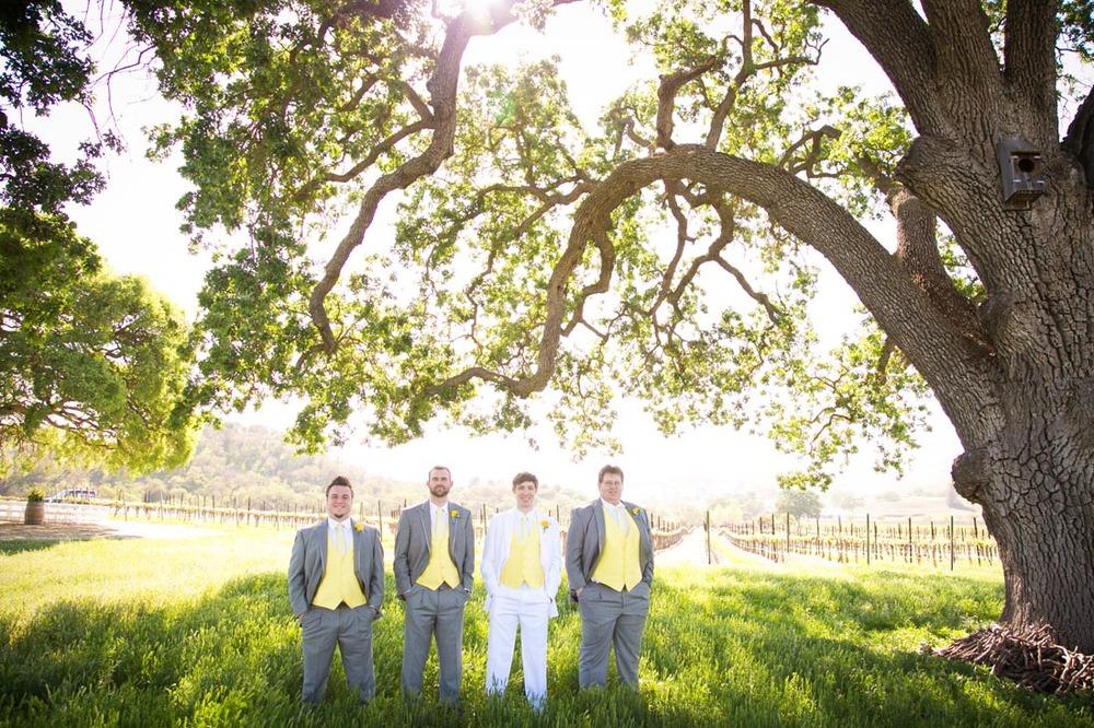 Cass Winery Wedding0032.jpg