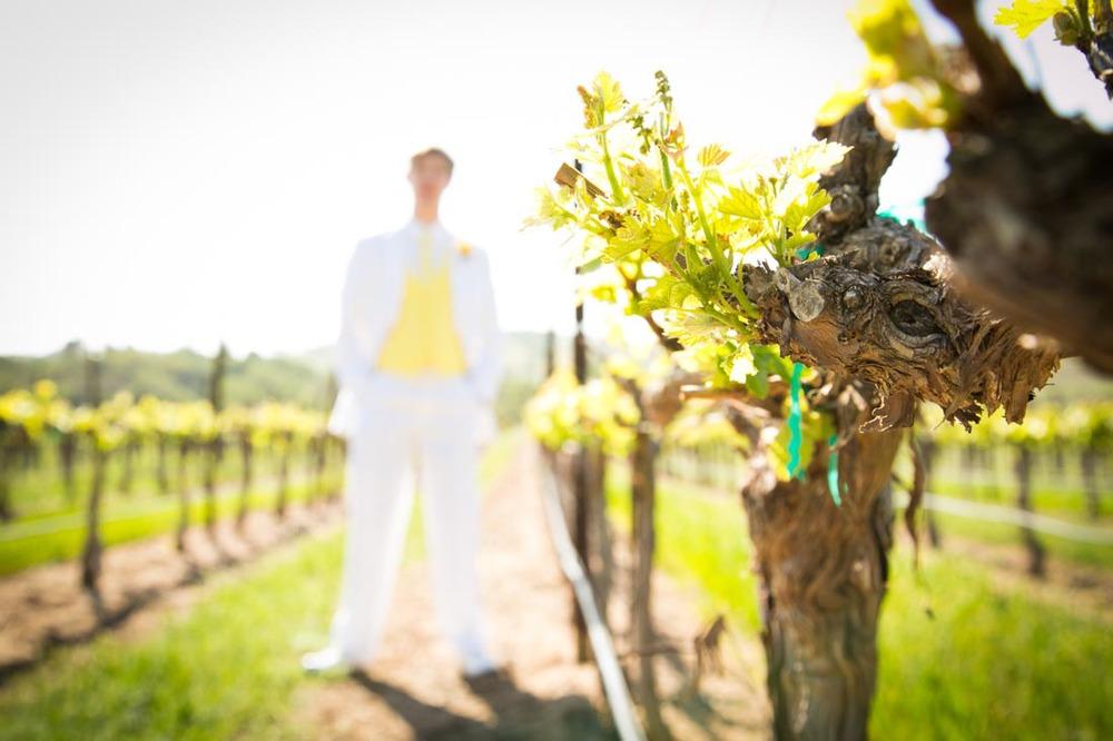 Cass Winery Wedding0041.jpg