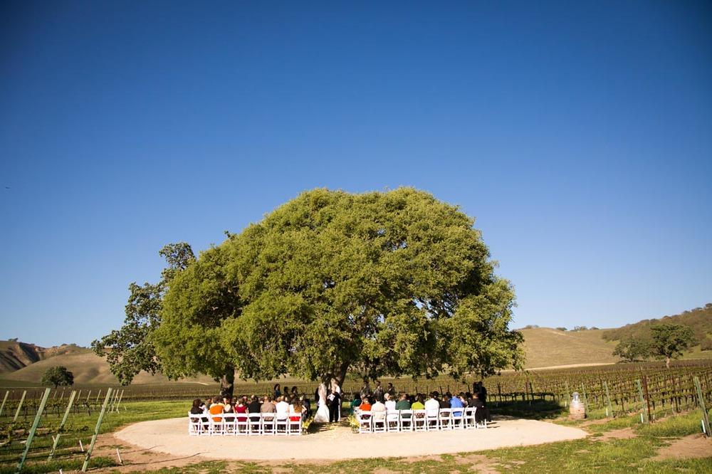 Cass Winery Wedding0053.jpg