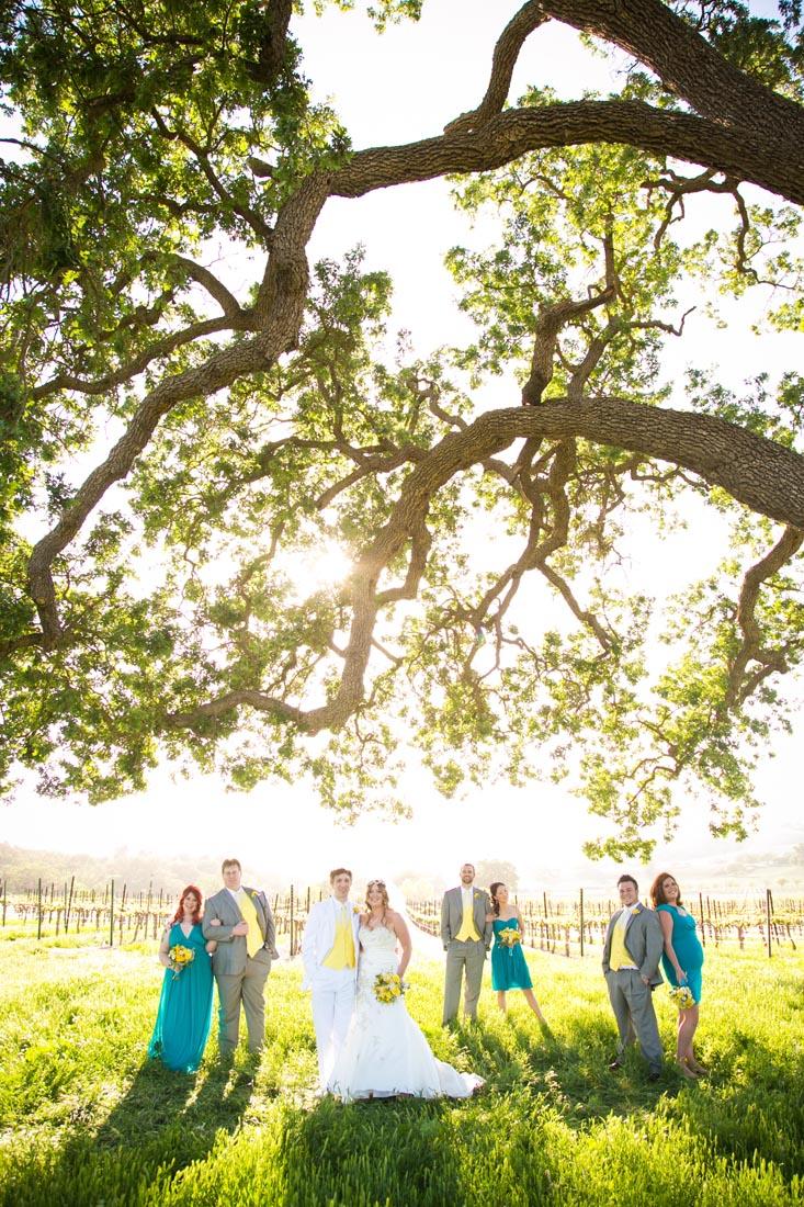 Cass Winery Wedding0058.jpg