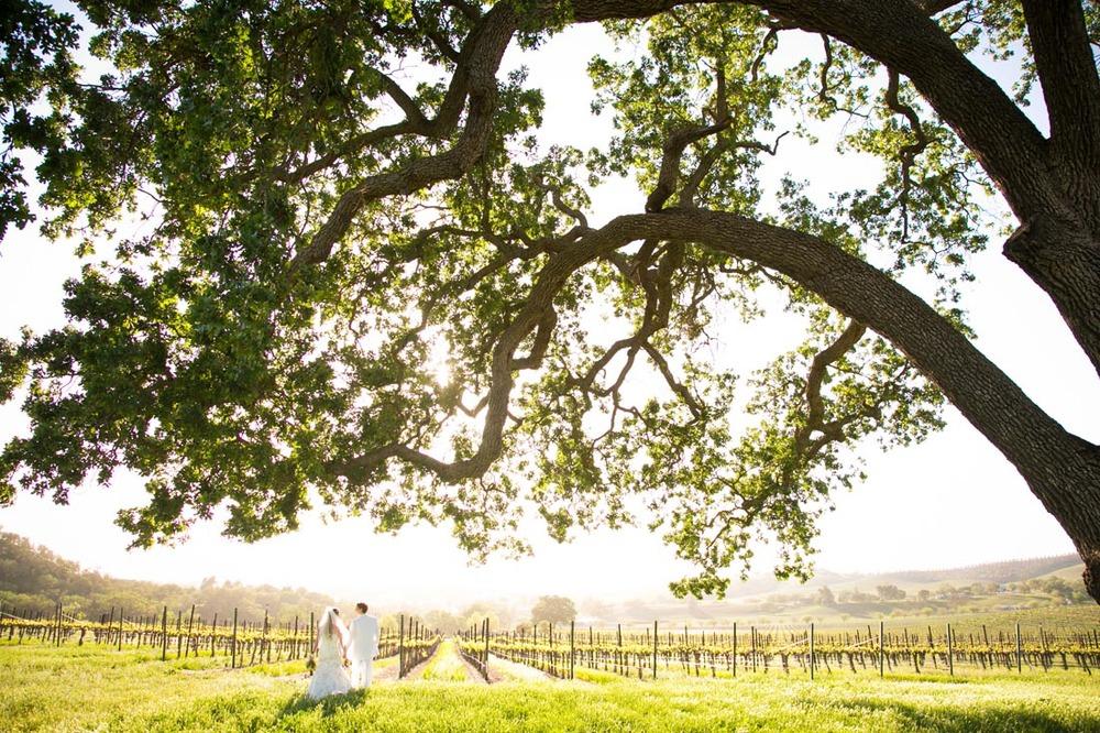 Cass Winery Wedding0076.jpg