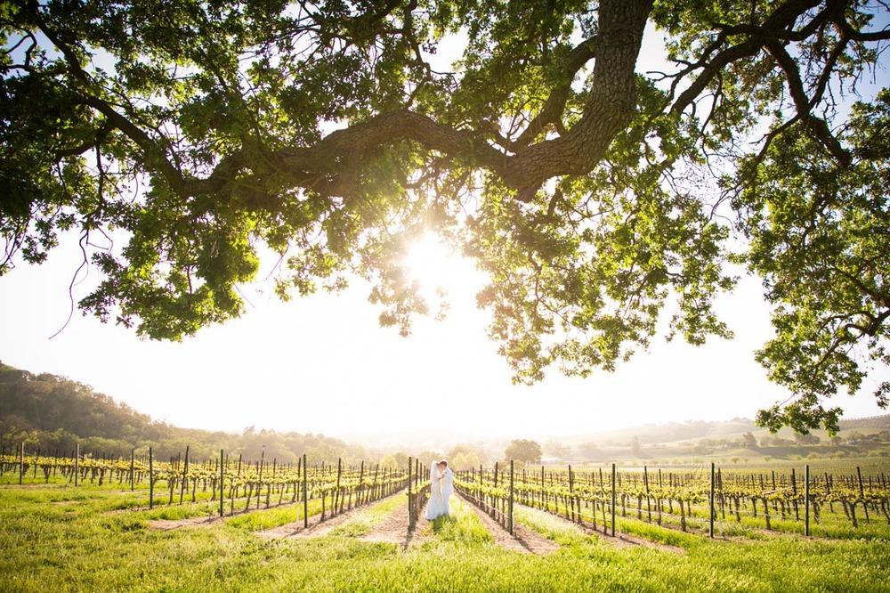 Cass Winery Wedding0077.jpg
