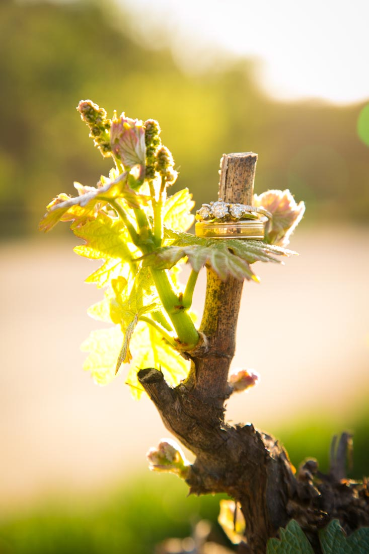 Cass Winery Wedding0097.jpg