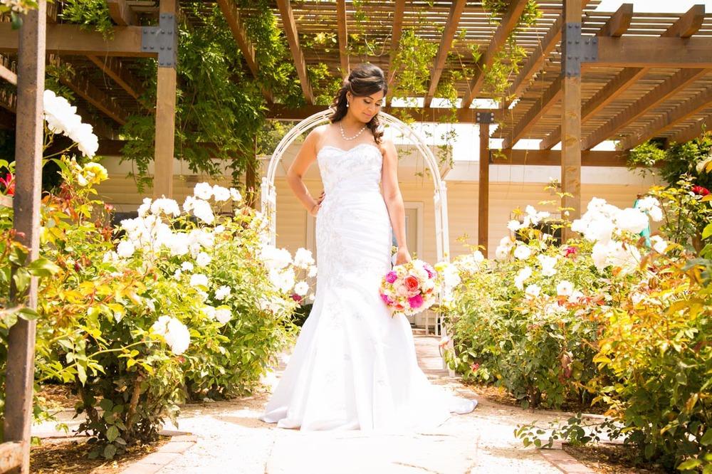 Gardens at Peacock Farms Wedding016.jpg