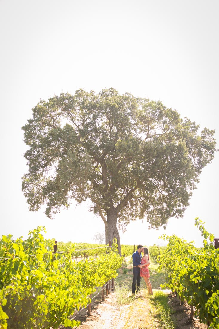 Le Vigne Winery Engagement Session 018.jpg