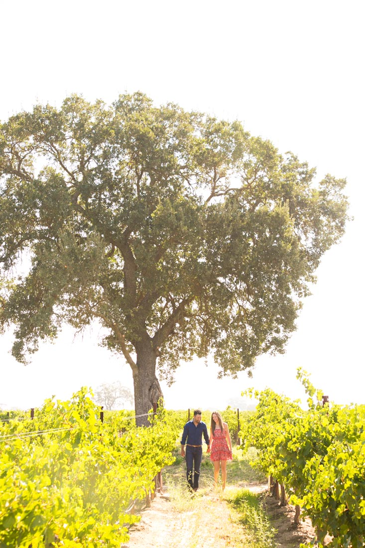 Le Vigne Winery Engagement Session 026.jpg