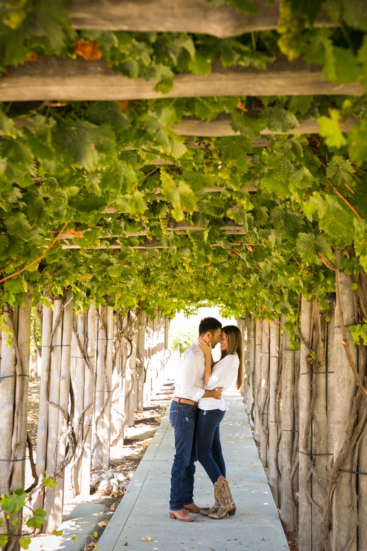 Le Vigne Winery Engagement Session 045.jpg