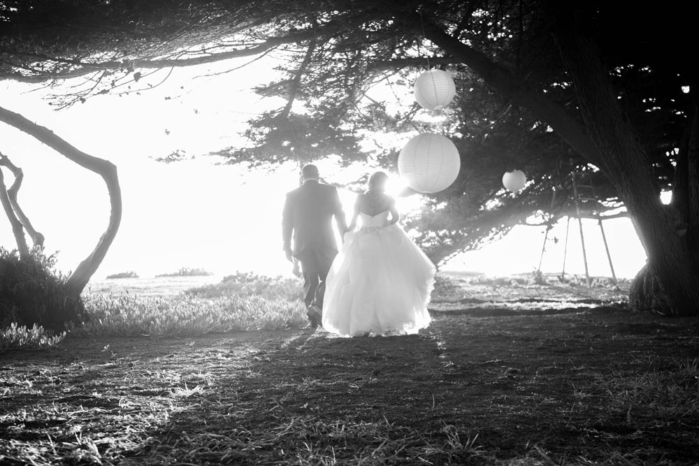 Cambria Wedding079.jpg