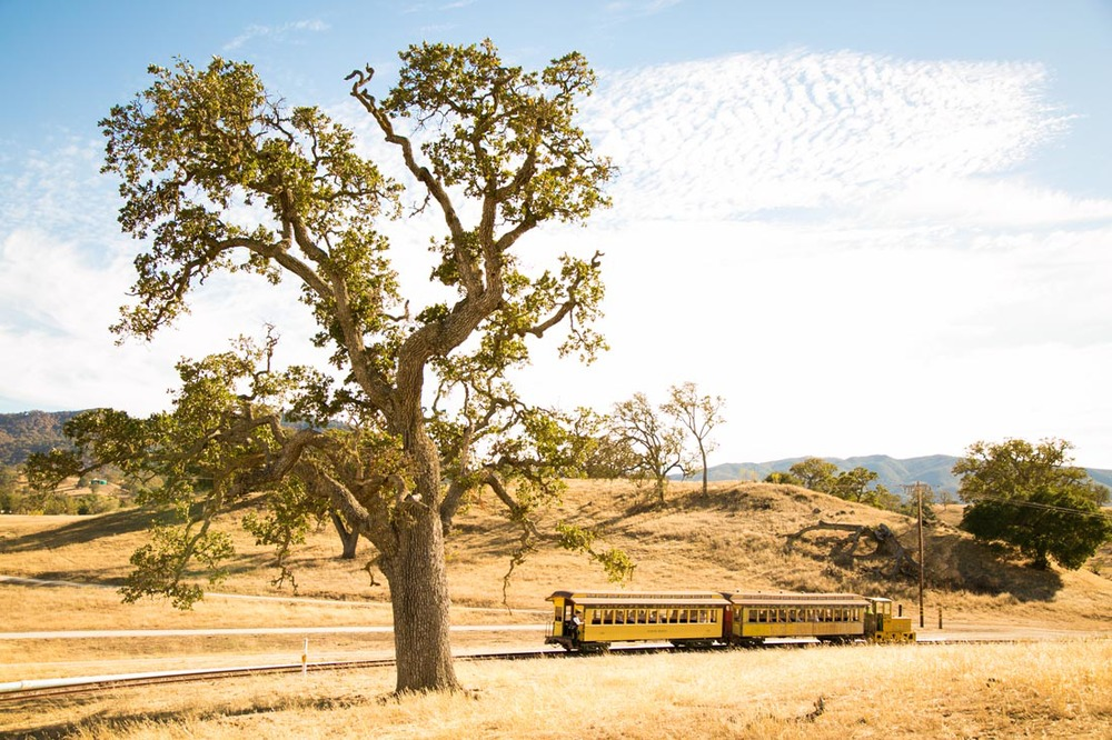 Santa Margarita Ranch Wedding106.jpg
