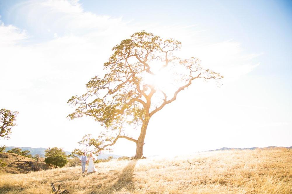 Santa Margarita Ranch Wedding121.jpg