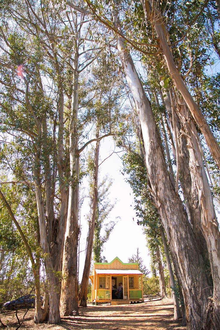 Tiber Canyon Ranch Wedding041.jpg