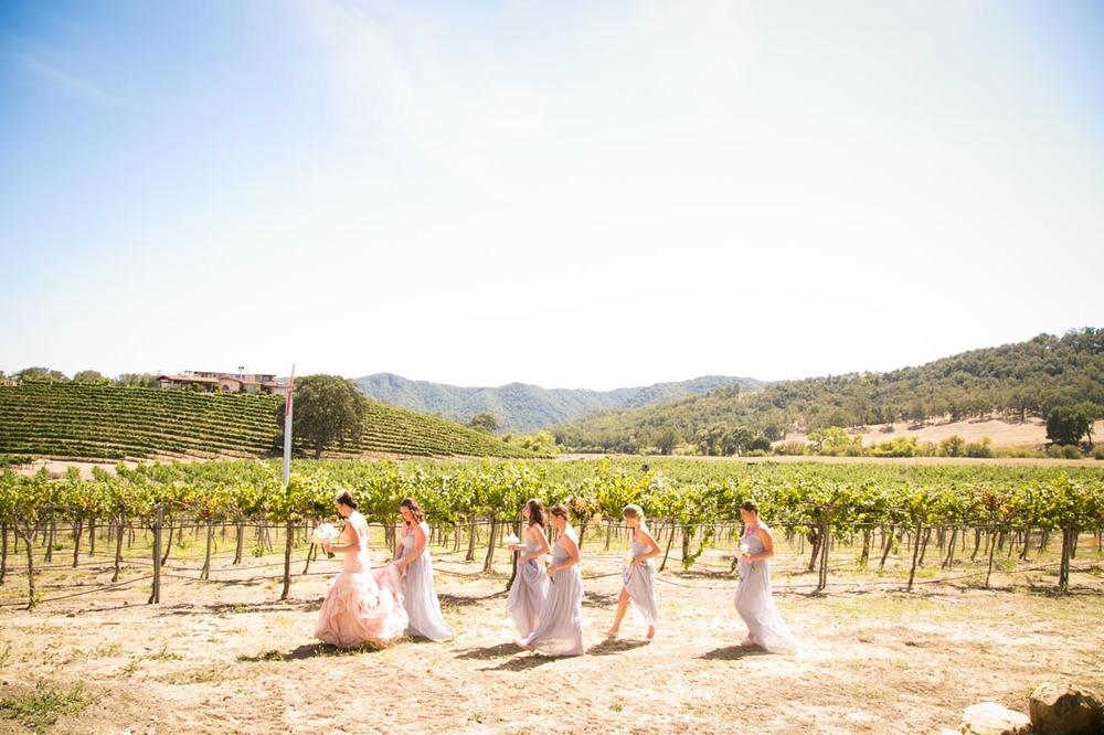 Hammersky Vineyards Wedding021.jpg