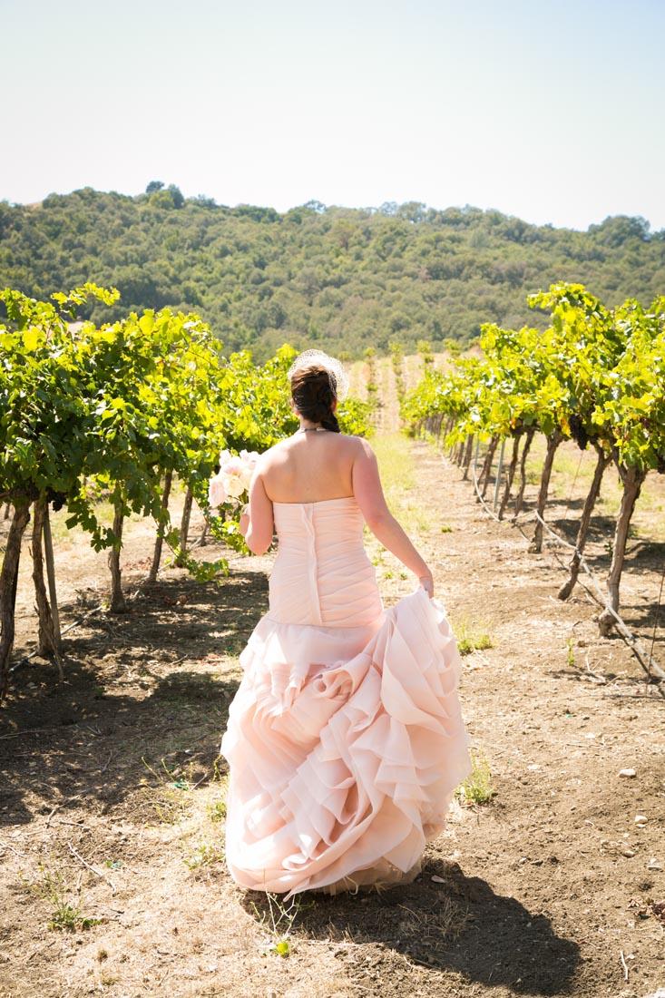 Hammersky Vineyards Wedding029.jpg