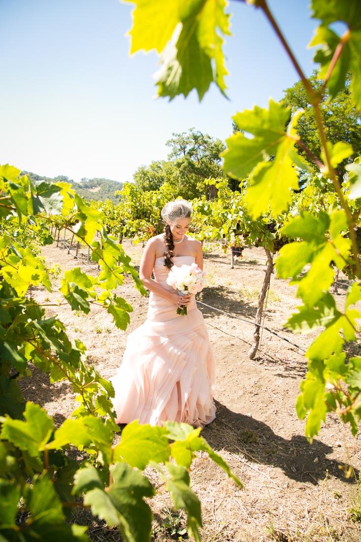 Hammersky Vineyards Wedding034.jpg
