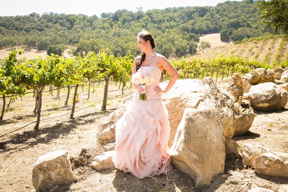 Hammersky Vineyards Wedding039.jpg