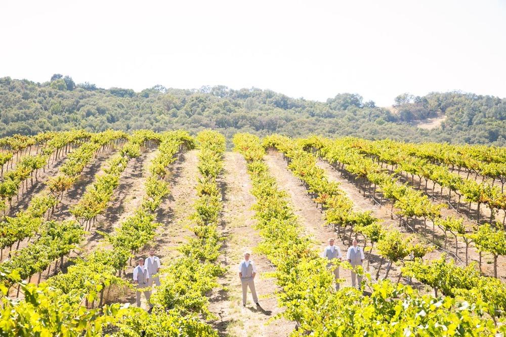Hammersky Vineyards Wedding051.jpg