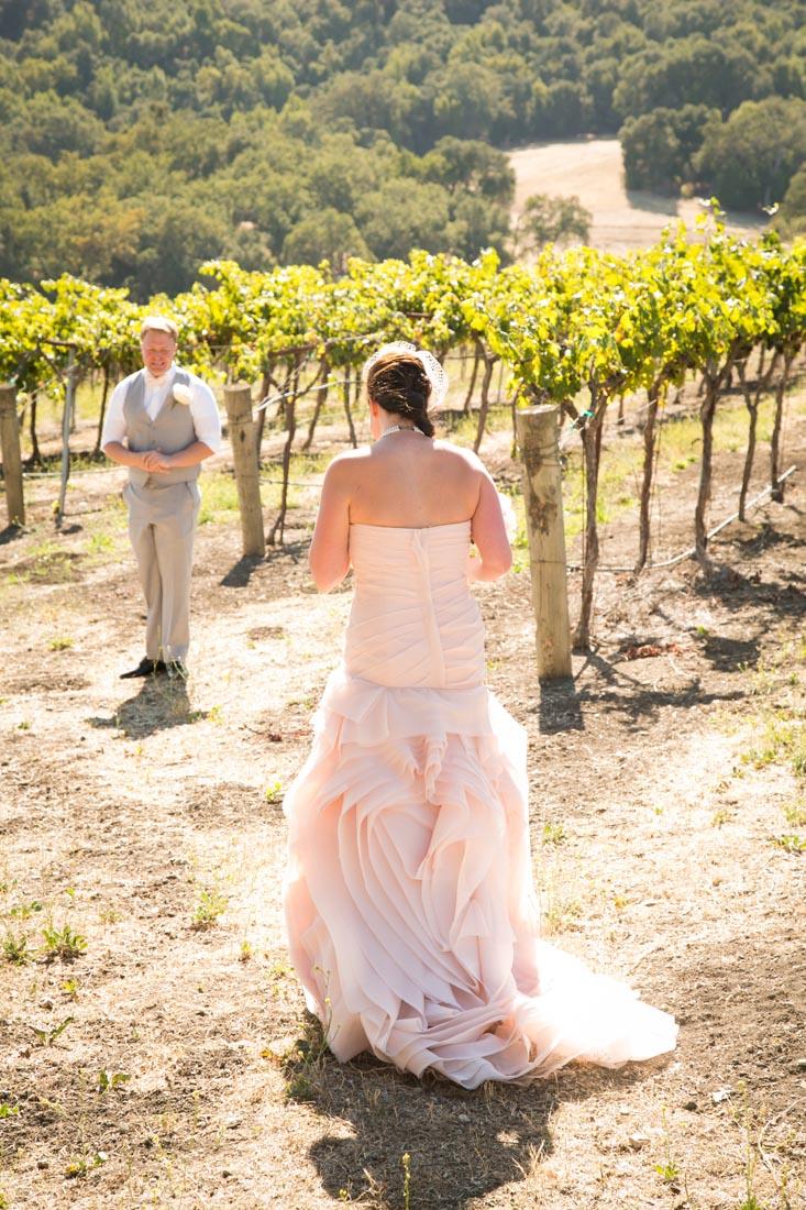 Hammersky Vineyards Wedding059.jpg