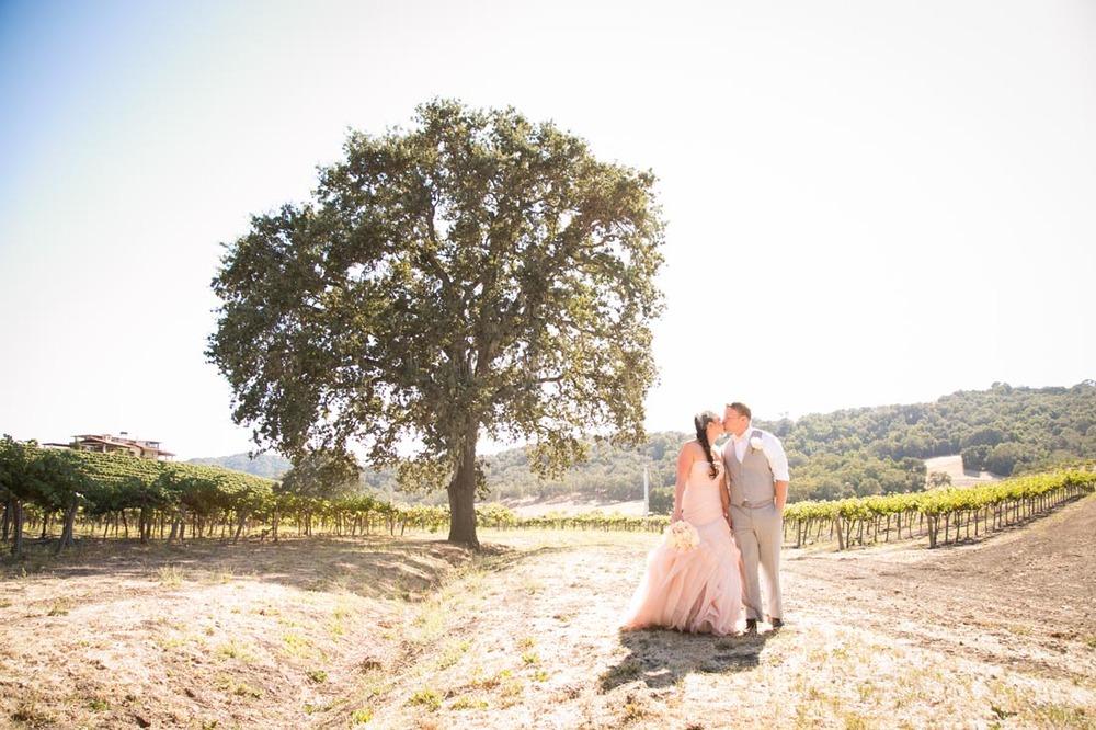 Hammersky Vineyards Wedding089.jpg