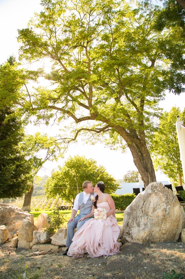 Hammersky Vineyards Wedding096.jpg