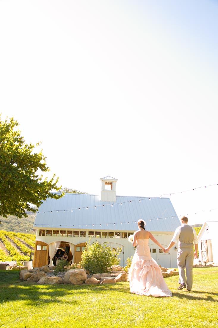 Hammersky Vineyards Wedding100.jpg