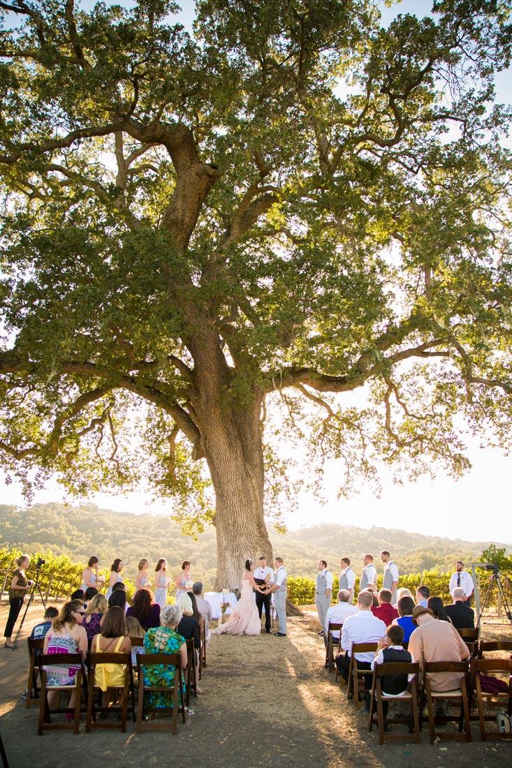 Hammersky Vineyards Wedding122.jpg