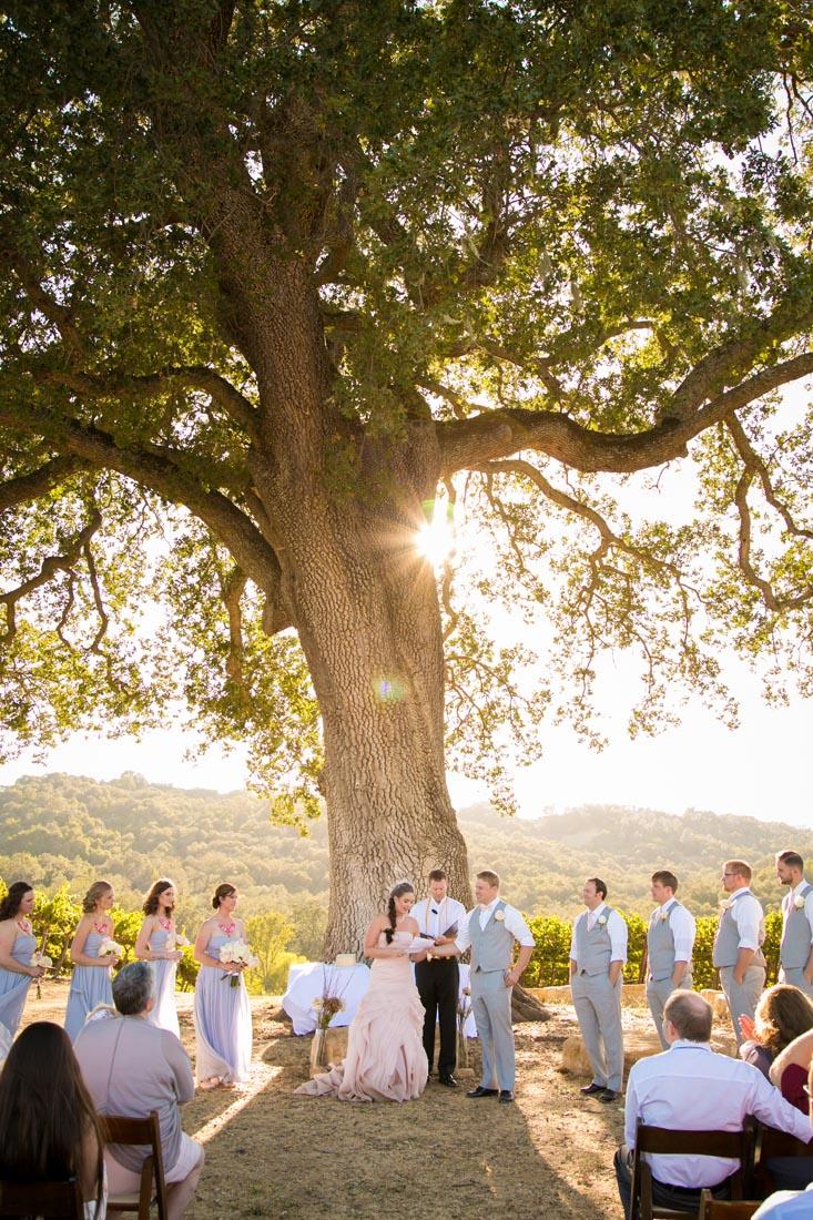 Hammersky Vineyards Wedding123.jpg