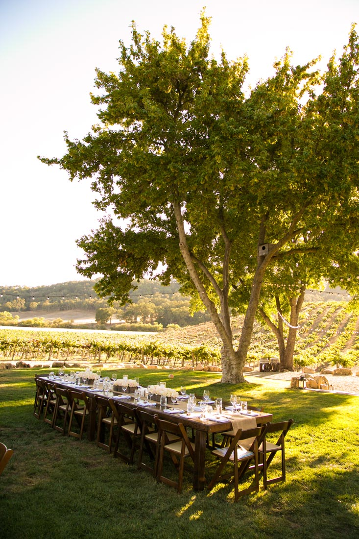 Hammersky Vineyards Wedding134.jpg