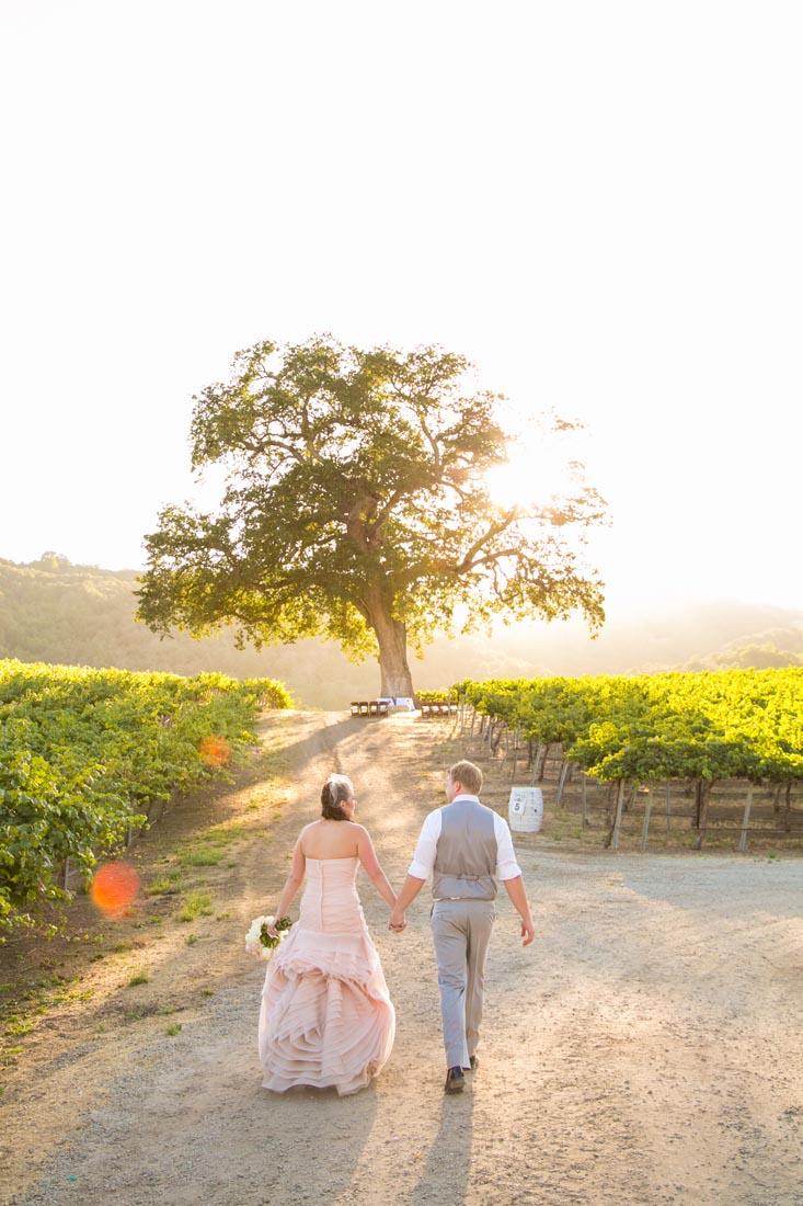 Hammersky Vineyards Wedding139.jpg
