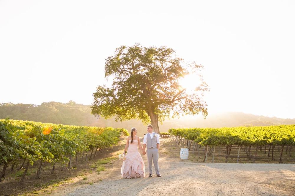 Hammersky Vineyards Wedding140.jpg