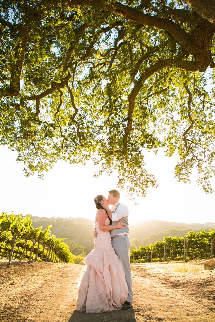 Hammersky Vineyards Wedding149.jpg