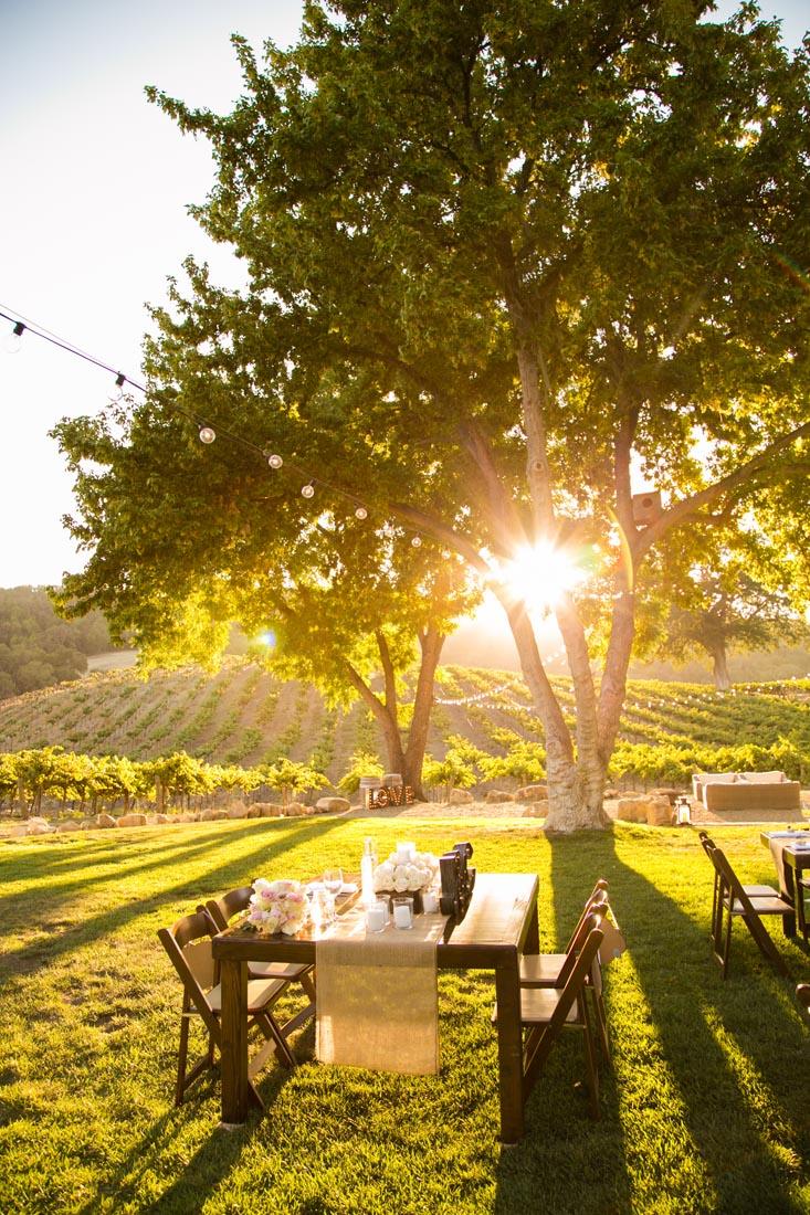 Hammersky Vineyards Wedding155.jpg